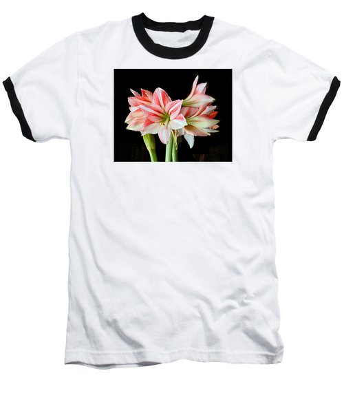 Fairyland Amaryllis  Baseball T-Shirt