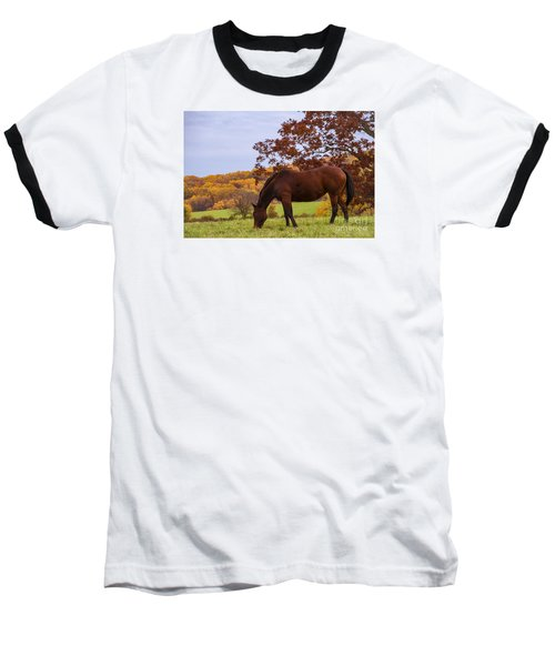 Fall And A Horse Baseball T-Shirt by Rima Biswas