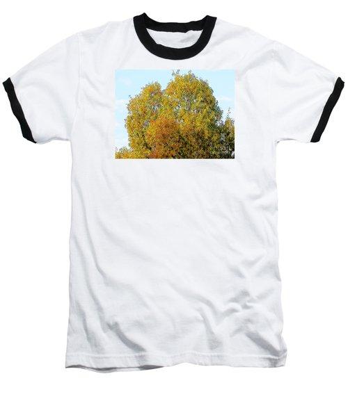 Fall Tree Baseball T-Shirt by Craig Walters
