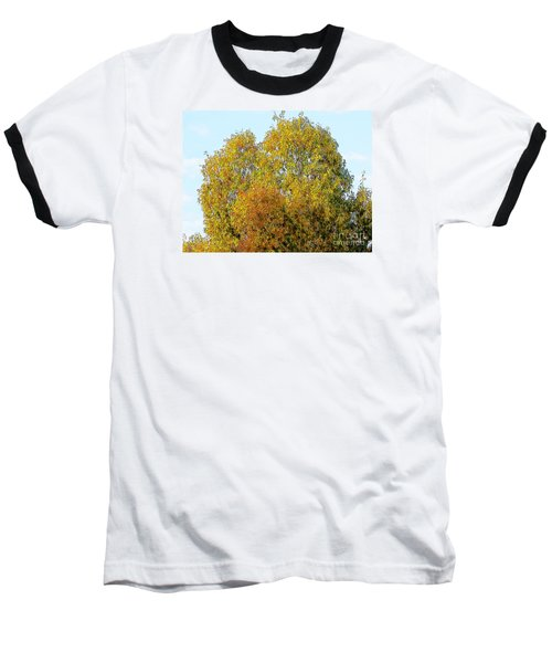 Fall Tree Baseball T-Shirt