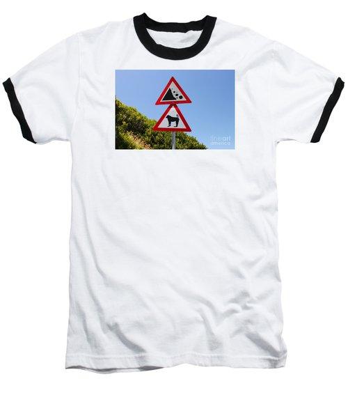 Falling Rocks And Baboons Baseball T-Shirt by Bev Conover