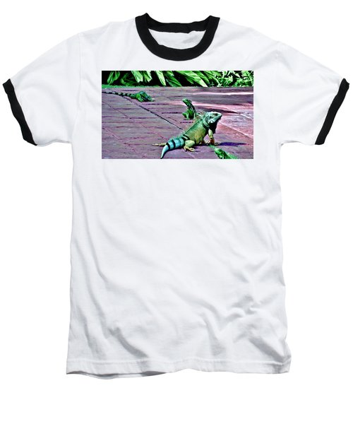 Family Of Iguanas Baseball T-Shirt