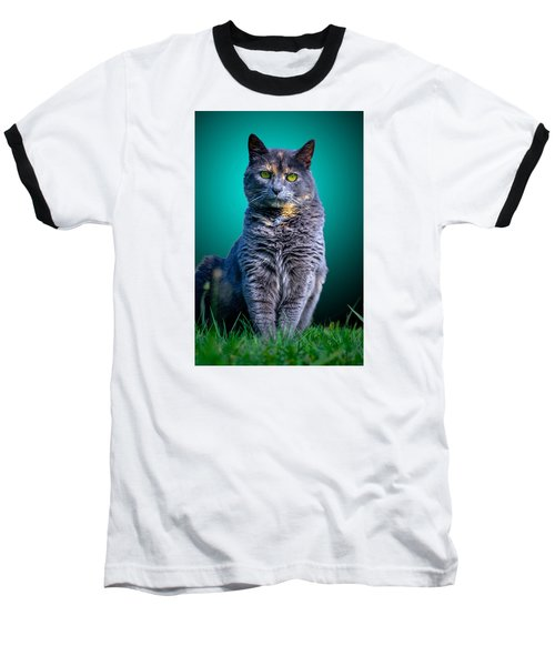 Feline Shine Baseball T-Shirt by Brian Stevens
