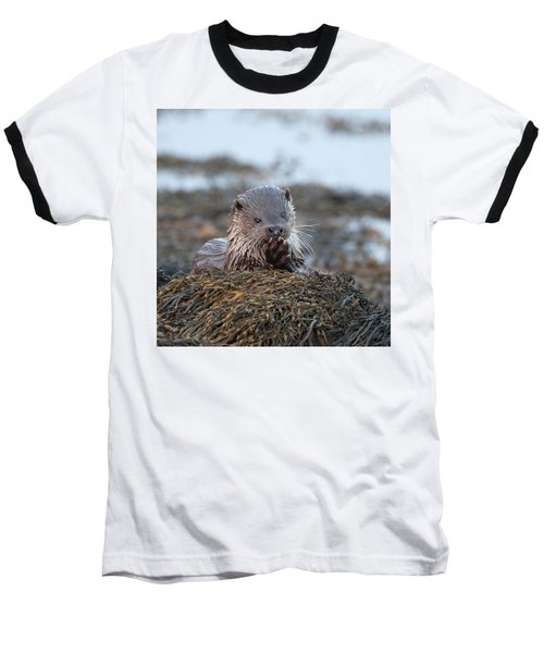 Female Otter Eating Baseball T-Shirt