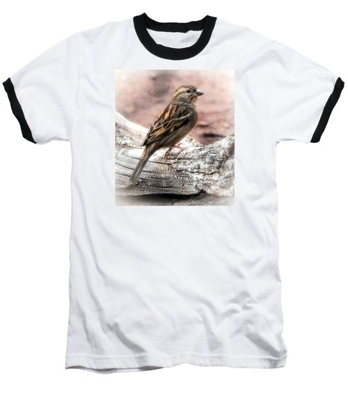 Female Sparrow Baseball T-Shirt