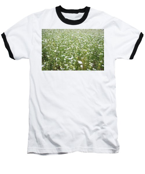 Field Of Queen Annes Lace Baseball T-Shirt