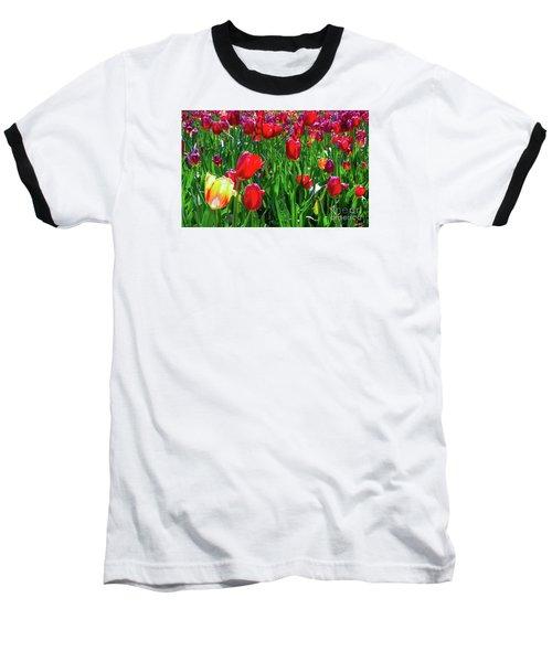 Tulip Garden Baseball T-Shirt