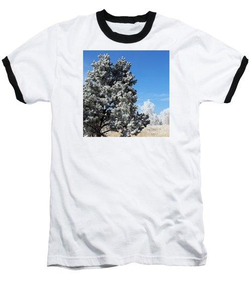 Fir Full Of Ice Baseball T-Shirt
