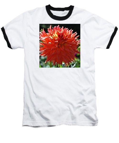 Fire It Up Dahlia  Baseball T-Shirt
