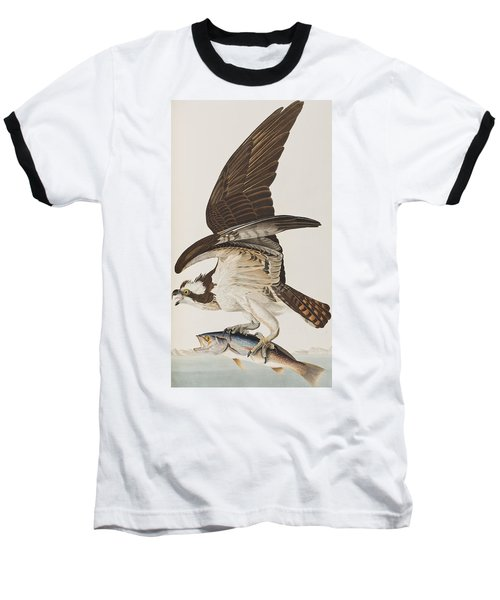 Fish Hawk Or Osprey Baseball T-Shirt