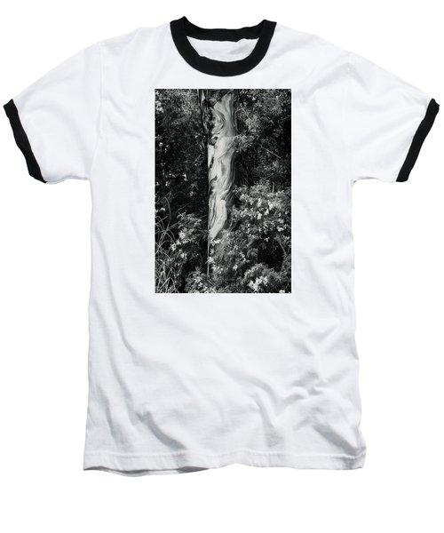 Fla-150523-nd800e-24853-bw-green Baseball T-Shirt by Fernando Lopez Arbarello
