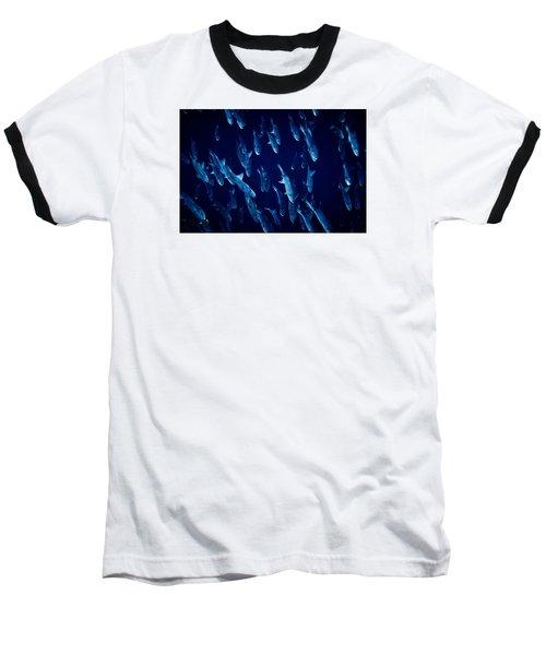 Fla-150811-nd800e-26105-color Baseball T-Shirt by Fernando Lopez Arbarello