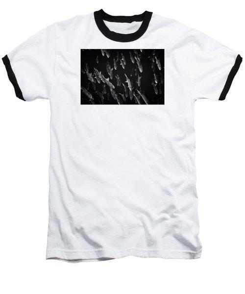 Fla-150811-nd800e-26105-bw-selenium Baseball T-Shirt by Fernando Lopez Arbarello