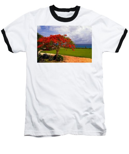 Flamboyant Tree In Grand Cayman Baseball T-Shirt by Marie Hicks
