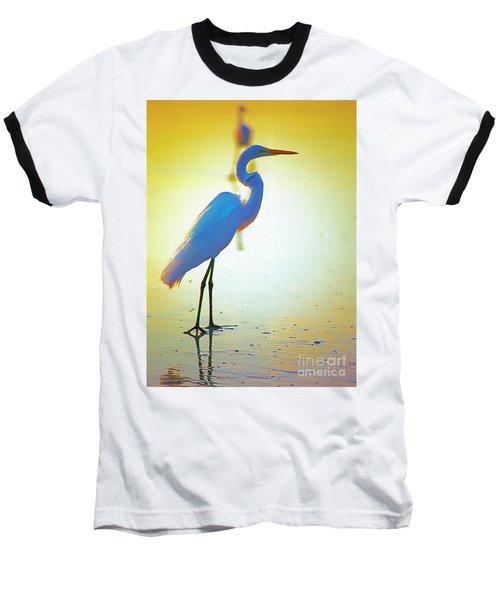 Florida Atlantic Beach Ocean Birds  Baseball T-Shirt