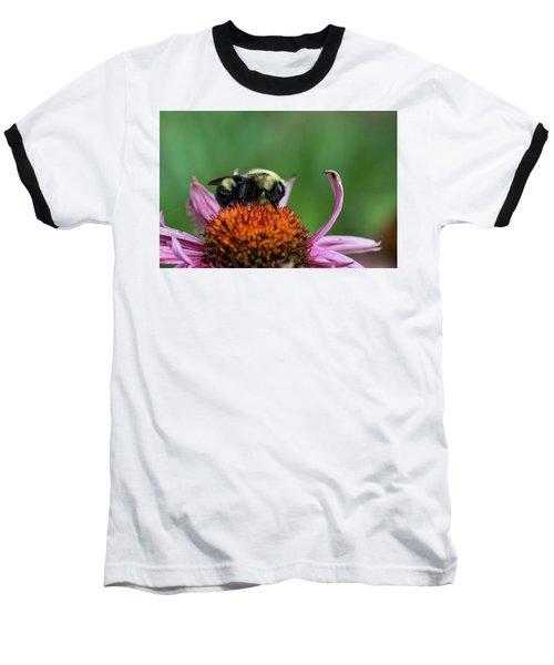 Flowerbee Baseball T-Shirt by Nikki McInnes