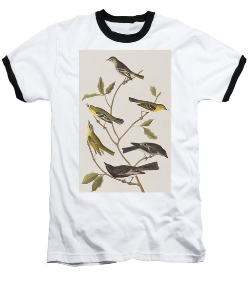 Fly Catchers Baseball T-Shirt by John James Audubon