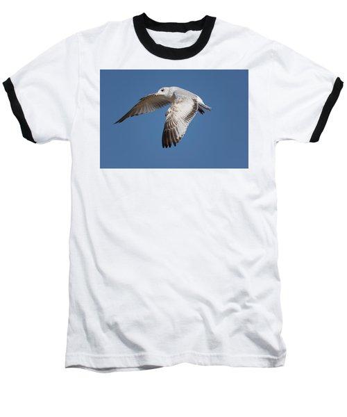 Flying Seagull Baseball T-Shirt