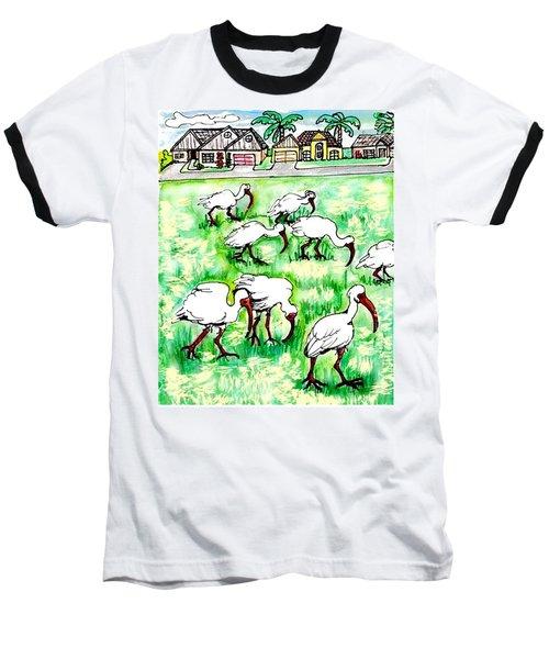 Foraging Ibis Baseball T-Shirt