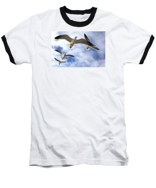 Four Gulls Baseball T-Shirt by Robert Och