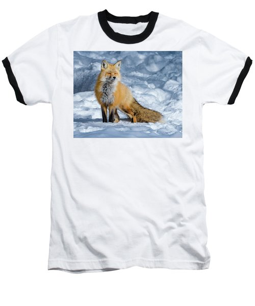 Fox On A Winter Afternoon Baseball T-Shirt