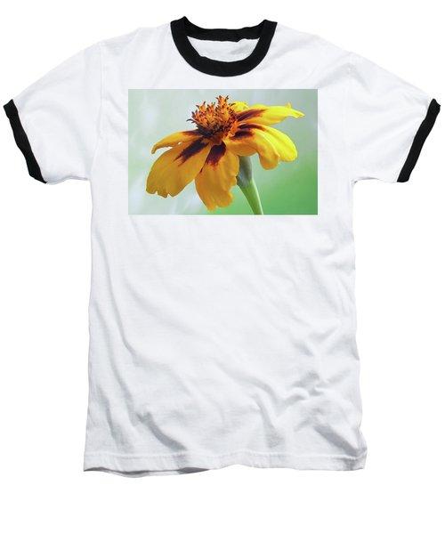 French Marigold Baseball T-Shirt