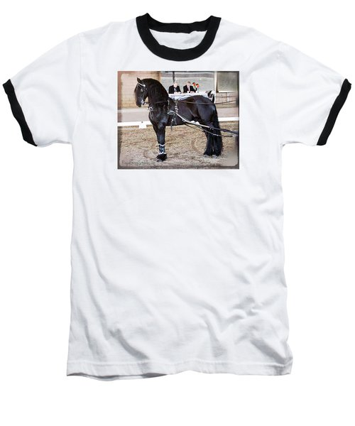Friesian Stallion Under Harness Baseball T-Shirt