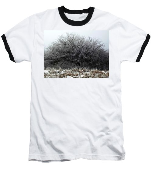 Baseball T-Shirt featuring the photograph Frosted Elm by Shelli Fitzpatrick
