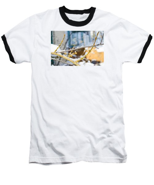 Baseball T-Shirt featuring the photograph Frosty Branches by Deborah Smolinske