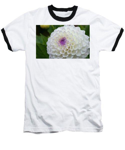 Gaylen Rose Dahlia 3 Baseball T-Shirt