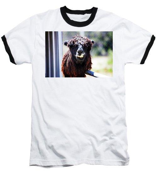 Geofery Baseball T-Shirt by Anthony Jones