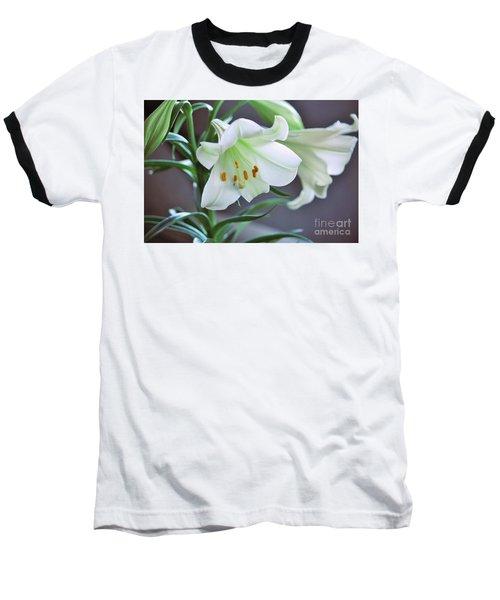 Glory Glory Baseball T-Shirt