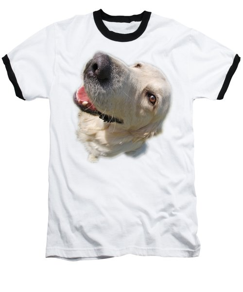 Golden Retriever Baseball T-Shirt