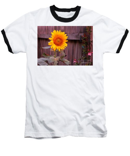 Golden Sunflower Baseball T-Shirt