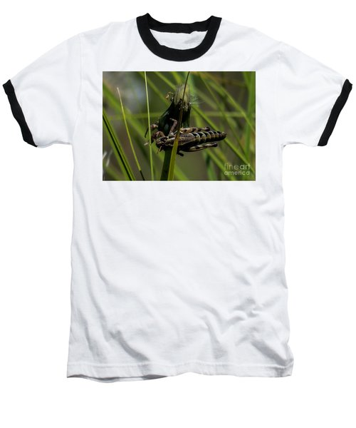 Grasshopper 2 Baseball T-Shirt