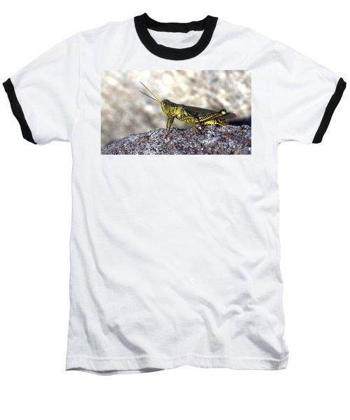 Grasshopper Baseball T-Shirt by Joseph Skompski