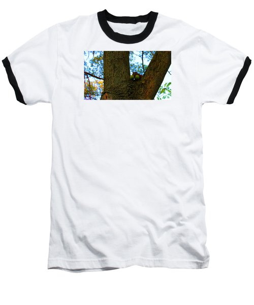 Baseball T-Shirt featuring the photograph Grateful Tree Squirrel by Michael Rucker
