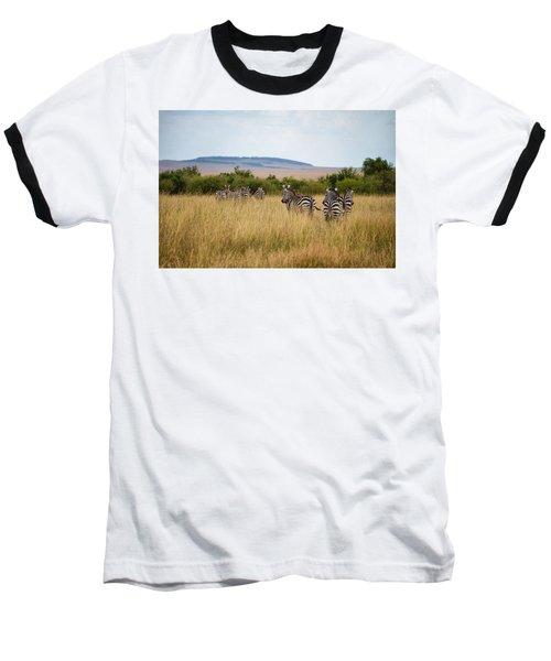 Grazing Zebras Baseball T-Shirt