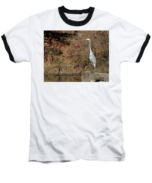 Great Blue Heron Standing Tall Baseball T-Shirt by George Randy Bass