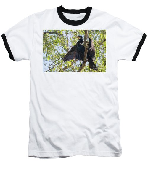Great Cormorant - High In The Tree Baseball T-Shirt