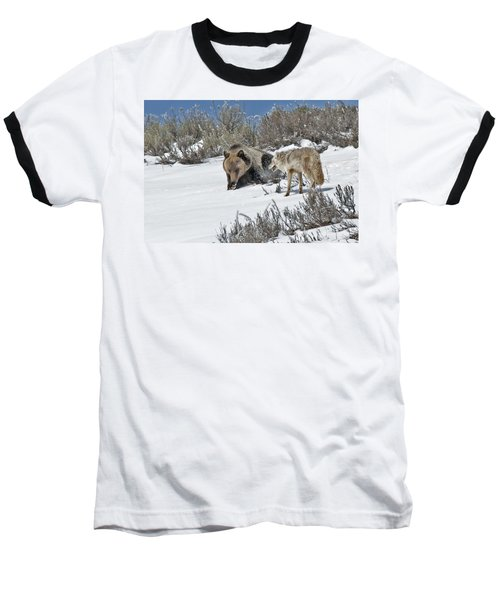 Grizzly With Coyote Baseball T-Shirt