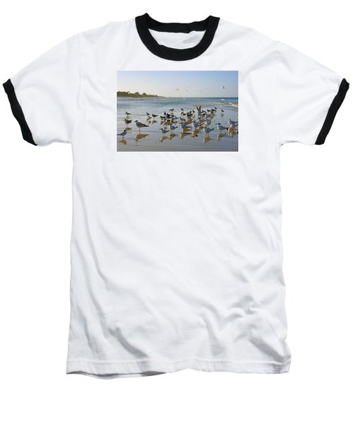 Baseball T-Shirt featuring the photograph Gulls And Terns On The Sanbar At Lowdermilk Park Beach by Robb Stan