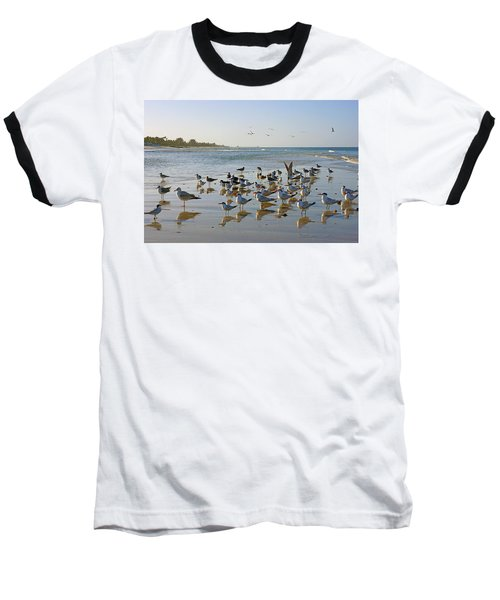 Gulls And Terns On The Sanbar At Lowdermilk Park Beach Baseball T-Shirt