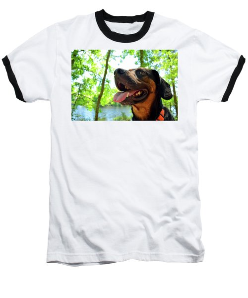Gus On A Hike Baseball T-Shirt