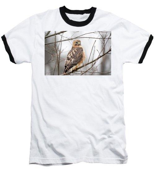 Hals Nicitating Membrane Baseball T-Shirt