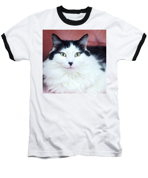 Baseball T-Shirt featuring the photograph Handsome Tuxy by Byron Varvarigos