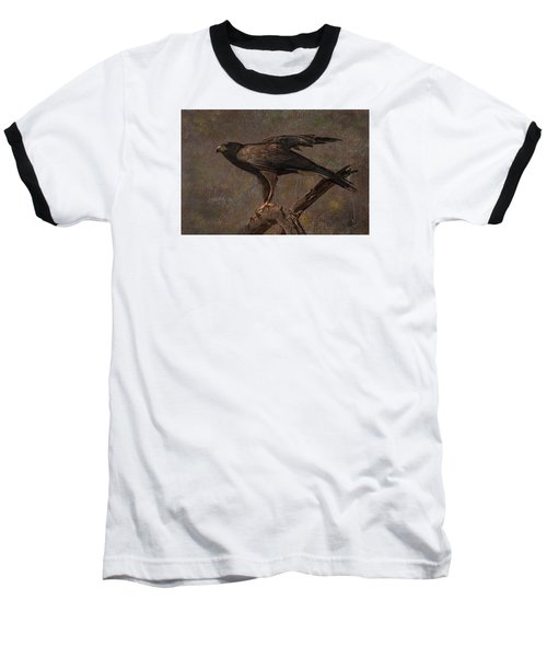 Harris's Hawk Baseball T-Shirt