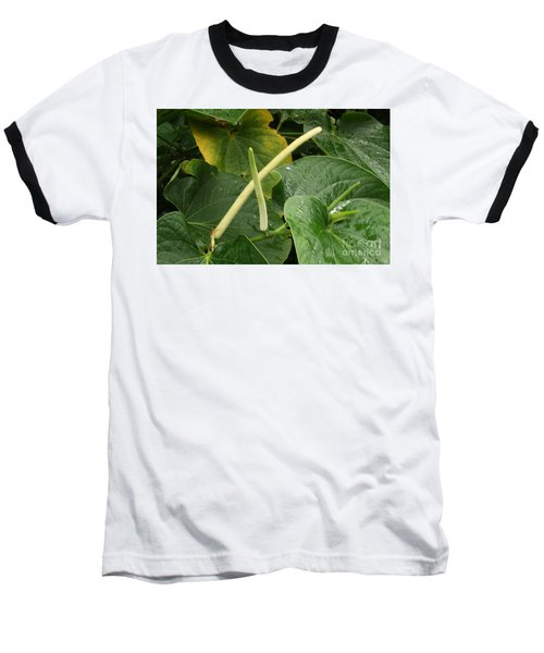 Hawaiian Kava Baseball T-Shirt