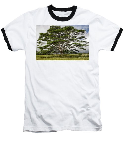 Hawaiian Moluccan Albizia Tree Baseball T-Shirt