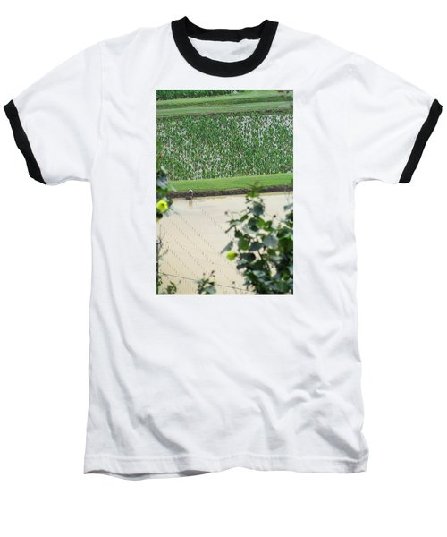 Hawaiian Transplants Baseball T-Shirt by Brenda Pressnall